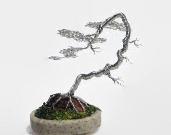 Miniature Bonsai Tree - Literati (Bunjin) style