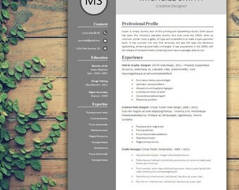 resume template professional resume template creative resume template for word