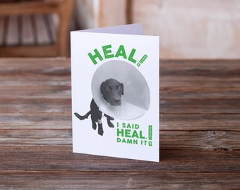 Get Well Card | Encouragement Card | Pet Card | Get Well Soon | Get Well Soon Funny | Card for Sick | Feel Better Card | Dog Card