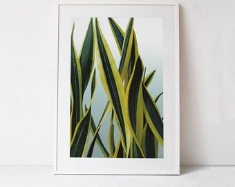 Green Wall Art Print, Botanical Art Print, Photography DIGITAL DOWNLOAD Art, Tropical Leaf Print Plant Print, Nature Print Plant Photo Print