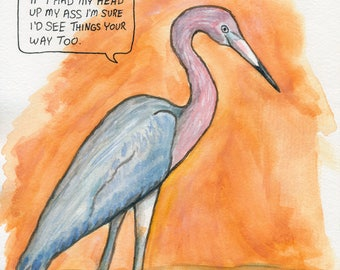 The Reddish Egret