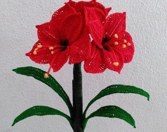 Amaryllis Crochet Flower, Amaryllis Bulb, Amaryllis Crochet Pattern