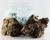 Gamal Root Vase - M