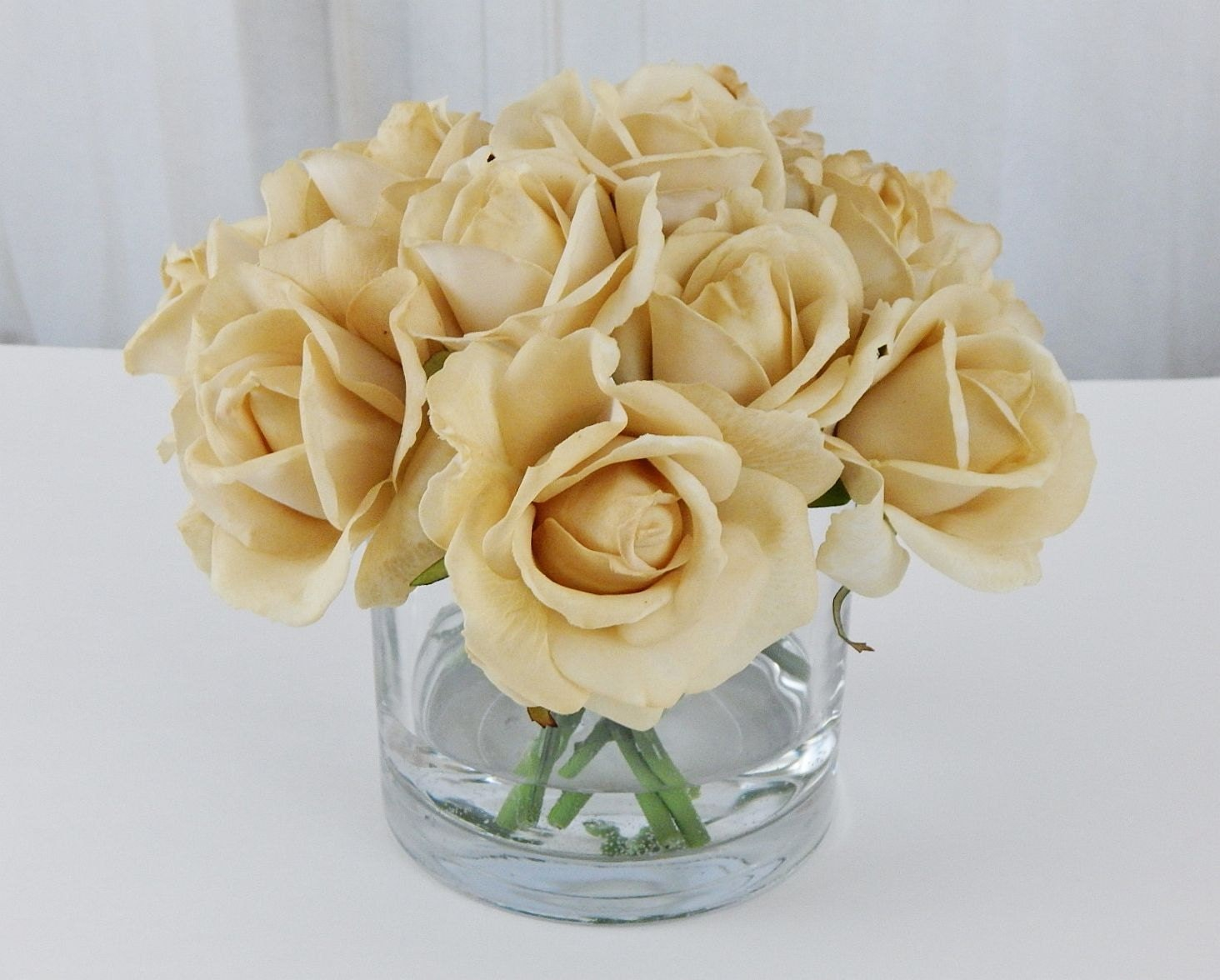 Champagne Tan Beige Rose Roses Faux Water Acrylic