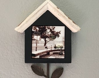 towel hook, key hook, home decor, home accents, chickens, guest parking, photo, photography,