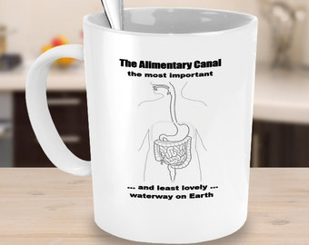 The Alimentary Canal - Coffee mugs - Funny mugs - Coffee mug gifts - Gifts for M.D.s - Gifts for Gastroenterologists - QuirkyMugsQuirkyTees