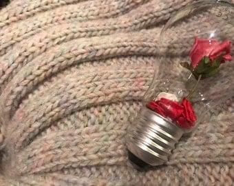 Impossibulb Rose in a Bulb
