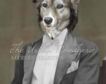 Dog Art Print, Whimsical Dog Art, Border Collie, Unique Animal Portrait, Distinguished Dog, Anthropomorphic Dog Portrait (#1002)