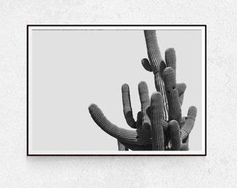 Cactus Print, Botanical Poster, Plant Wall Decor, Minimalist Poster, Scandinavian Wall Art, Desert Printable, Black and White Photography.