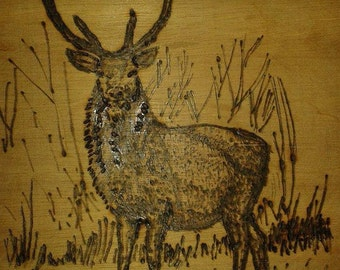 Pyrography Deer Plaque