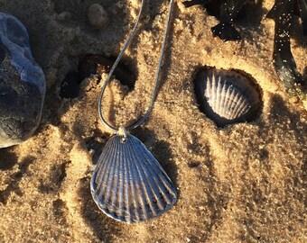Scallop Shell Necklace in Fine Silver