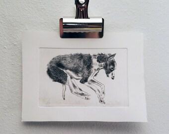 Greyhound Intaglio Fine Art Print