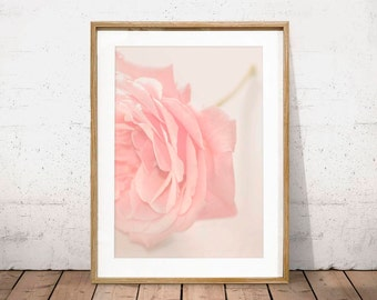 ROSE WALL PRINT, Blush Pink Rose Fine Art Photography, Beautiful Flower Picture, Love Poster, Shabby Chic, Gift for Woman, digital download
