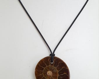 Ammonite Pendant Necklace, Free Shipping (E17034)