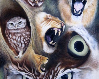 Opposites-Owls and Lions-oil pastels on paper-100 x 70 cm