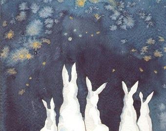 Fine Art Print - Rabbits - Fireworks