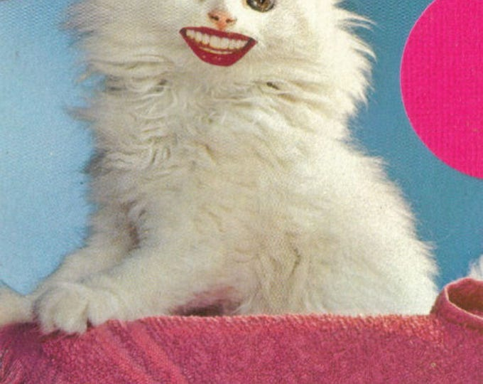 Smiling Cat Art Collage, Happy Kitty Artwork