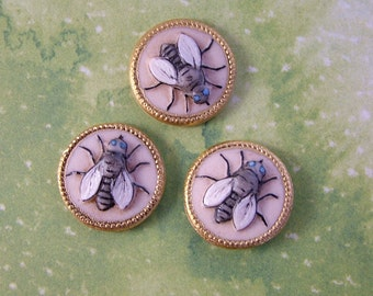 Fly Button set of 3