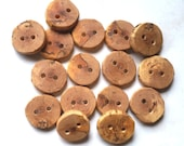 Handmade Tree Branch Wood Buttons, Natural Wooden Buttons, Ash, 1 1/16 Inch to 1 3/16 Inches, Set of 16