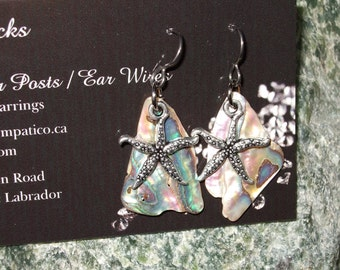 Paua Shell Starfish Dangle Earrings Earings Titanium Ear Wires Handmade in Newfoundland Hypo Allergenic New Zealand
