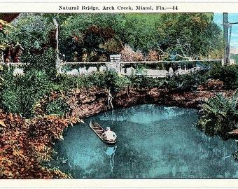 Vintage Florida Postcard - Natural Bridge over Arch Creek, Miami (Unused)