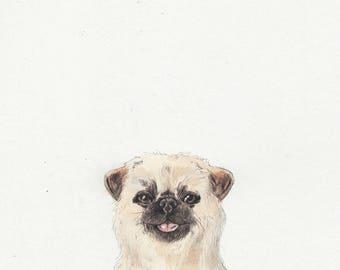 Original Painting... Puppy