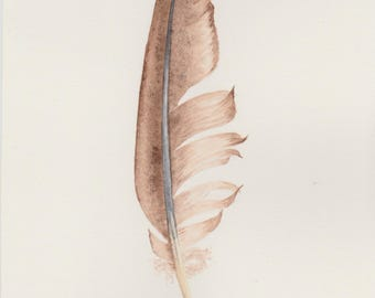 Original watercolour feather painting ~ warm brown feather