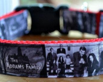 Adams Family dog collar & leash