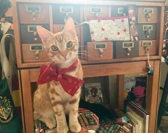 Crazy Cat Lady Wristlet purse