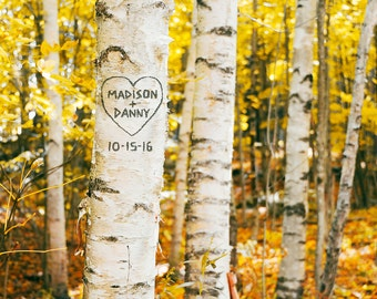 Birch Tree Art Print, Personalized Print, Aspen Tree, Carved Tree, Couples Gift, Gift for Wife, Romantic Gift, Fall Decor, Custom Print