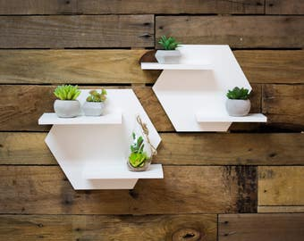 Hexagon Shelf Set for Wall, Home Decoration White Shelves for Wall, Plant Holder Minimalist Style Room Wall Decor Artwork (Item - HES520)