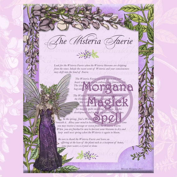 The Wisteria Faerie