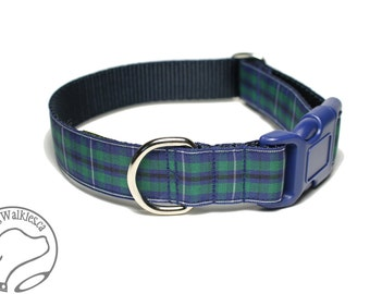 "Modern Douglas Clan Tartan Dog Collar - 1"" (25mm) Wide - Green and Navy Plaid - Matingale or Side Release Buckle - Choice of size & style"