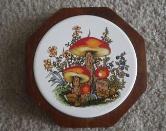 Vintage Tile Mushroom Wall Plaque Wood Frame Kitchen Picture Mushroom Decor Colorful Mod Hippie Boho Trivet Pot Holder Wall Hanging