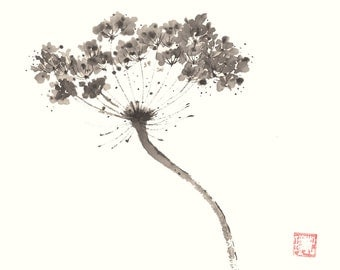 Queen Anne's Lace Ink Chinese Brush Painting