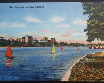 Diversey Harbor, Chicago, Lincoln Park, Lake Shore Drive, Vintage Postcard