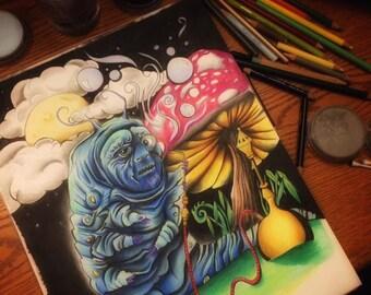 Wonderland Drawings