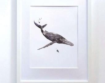 Whale Print, Humpback Whale, Watercolour Prints, Whale Art, Wall Art, Home Decor, Art Print, Watercolour Art, Watercolor Art, Illustration