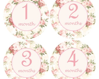 Monthly Baby stickers, Flower Month Sticker, Milestone stickers, Pink month stickers, Vintage growth stickers, baby shower gift,  A202