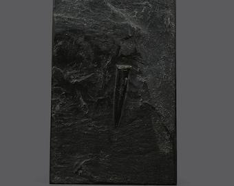 Vintage Belemnite Prehistoric Fossil Plate Wall Art Belemnites Belemnitida Natural Stone Black