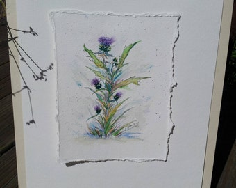 Watercolor of Thistles Painted With Scottish Water (1179)