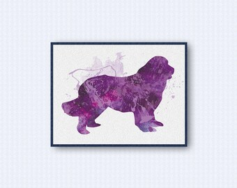 Newfoundland Dog Watercolor Poster