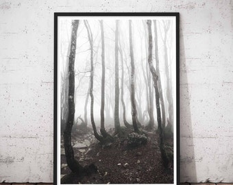 Forest Woodland Wall Art, Fall Rustic Decor, Tree Photography Moody Landscape Moutain Fog Print, Misty Foggy, Tree Branches Print, Trees Art