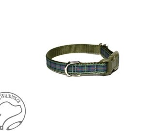 "NEW - Flower of Scotland Tartan Small Dog Collar - Thin Dog Collar - 1/2"" (12mm) Wide - Sage Blue Plaid - Choice of collar style and size"