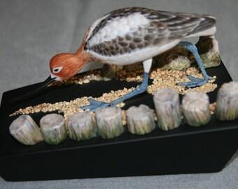 miniature american Avocet shorebird woodcarving
