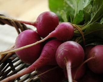 300+ Radish Seeds- Purple Plum