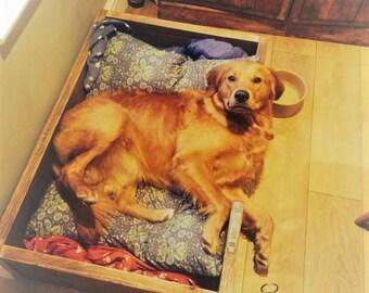 Scaffolding board dog bed