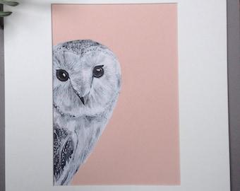 Barn Owl, Original Pen and Ink