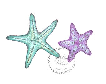 Starfish Beach House Ocean Underwater Print Illustration
