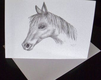 Greeting Card / Horse Greeting Cards / Horse Note Cards / Horse Stationery / Blank Cards / Just Because Cards / Art  N25